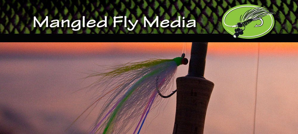 MFM_sunset_fly