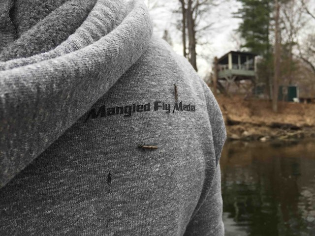 mangled fly clothing