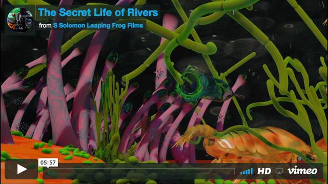 secret life rivers