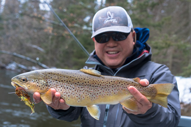 Upper Manistee River Trout Fishing