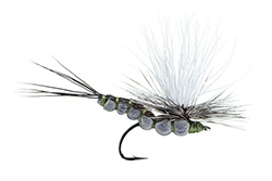Dry Flies for Trout
